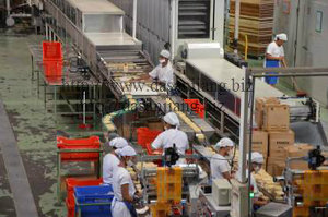 Instant Noodle Production Line - Packing