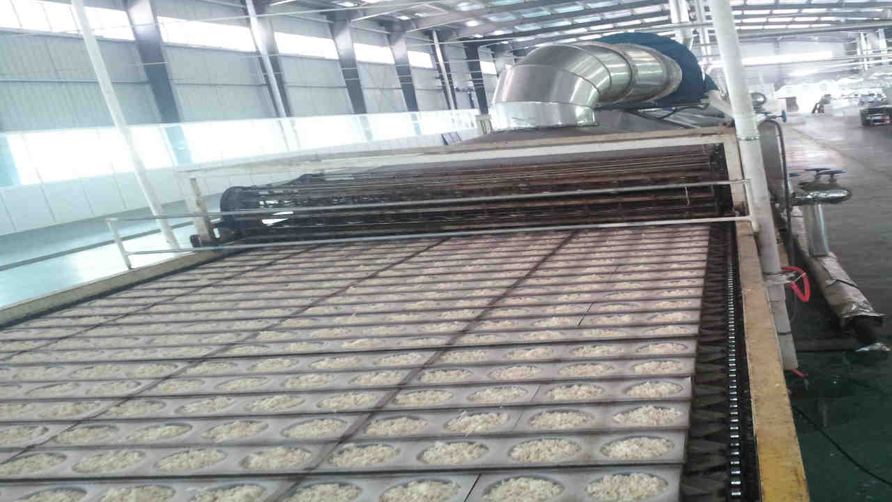 Instant Noodle Production Line - Single Layer Dryer